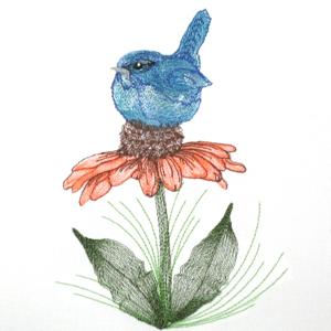 BLUEBIRD CONEFLOWER MINI SET 5X7