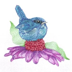 BLUEBIRD CONEFLOWER MINI SET 4x4